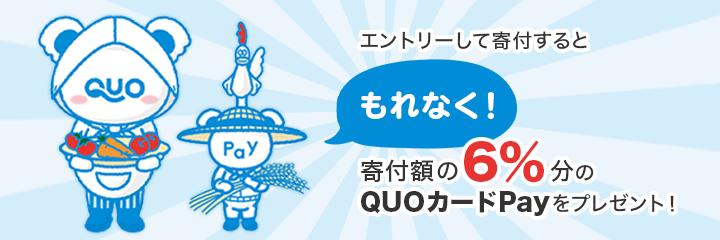 エントリーして寄付するともれなく寄付額の6%分のQUOカードPayをプレゼント!
