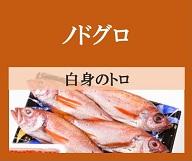 埋もれた魚「ノドグロ」