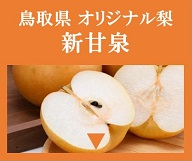 鳥取県オリジナル品種の梨「新甘泉(しんかんせん)」