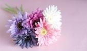 花・植物・ガーデニング